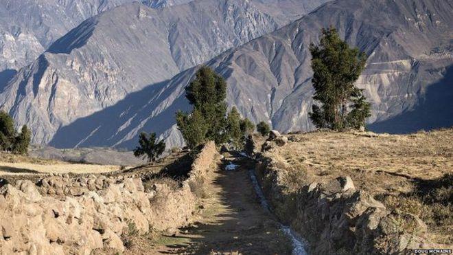 Bolivia busca rehabilitar ruta preincaica para impulsar el turismo