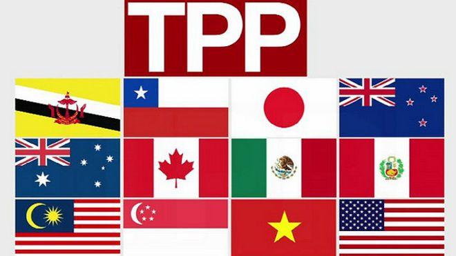 """a€œå¤aå13æ′‹ä¼™ä¼′å…3ç3»åå®š(TPP)a€çš""""图片搜ç′¢结果"""