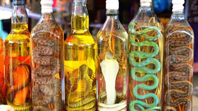 El polmico vino de serpiente que causa sensacin en el sudeste