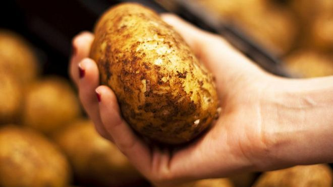 Картинки по запросу крахмалистая картошка
