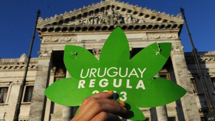 Activista muestra un cartel por la legalización de la marihuana frente al palacio Legislativo uruguayo.