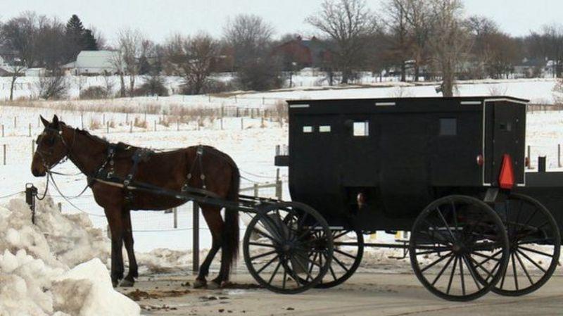 Carro tirado por caballos
