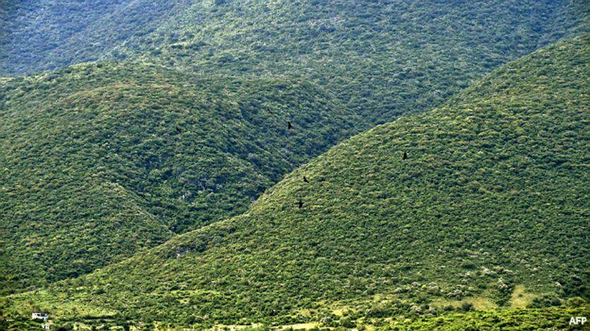 Cerros de Iguala, Guerrero