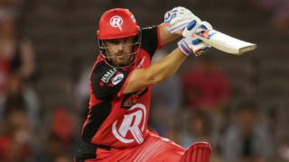 Aaron Finch of Melbourne Renegades