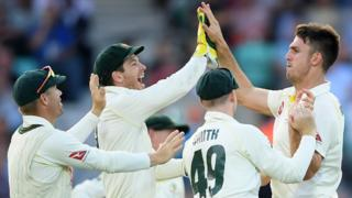 Mitchell Marsh celebrates a wicket