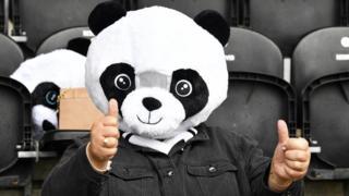 Paisley Panda