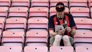 Bournemouth fan