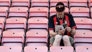Bournemouth fan