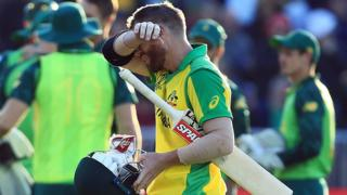 David Warner is disappointed after being dismissed