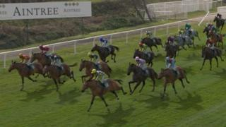 Runners in the Virtual Grand National