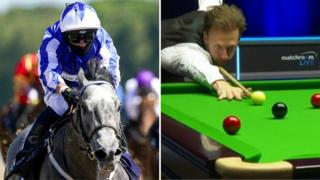 Horse racing and snooker