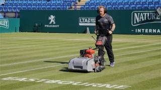 Eastbourne lawn mower