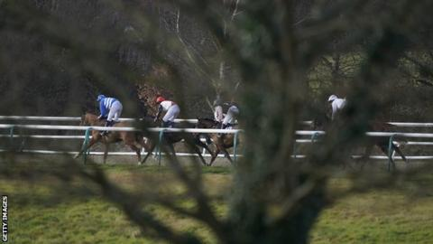 Horses in action at Lingfield