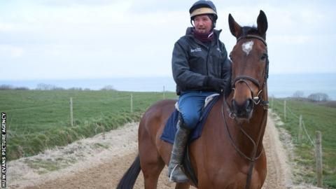 Teaforthree on the gallops at his Pembrokeshire home