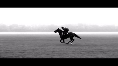 Prix de l'Arc de Triomphe - An ode to Treve