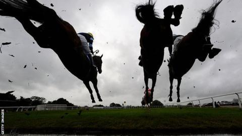 Horses over a jump