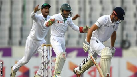 Bangladesh celebrate Alastair Cook's wicket