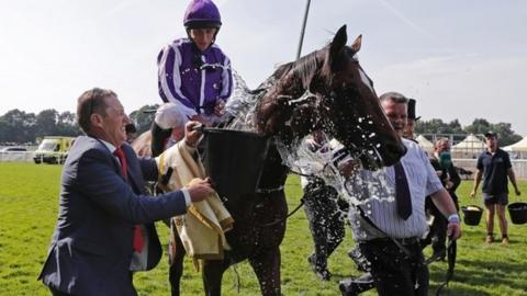 Highland Reel at Royal Ascot