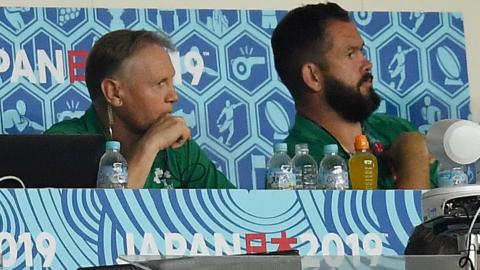 Joe Schmidt and Andy Farrell during Ireland's shock defeat by Japan