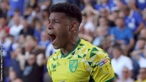 Onel Hernandez celebrates getting the second Norwich goal