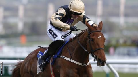 Yorkhill has won twice at the Cheltenham Festival