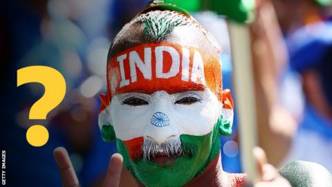 India fan at the Cricket World Cup