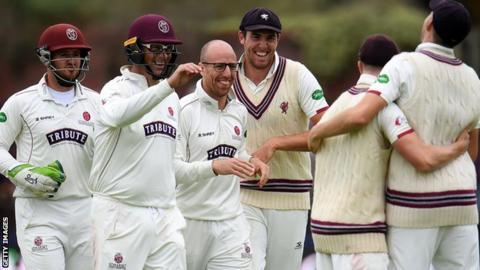 Somerset celebrate a wicket