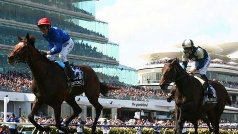 Cross Counter wins the Melbourne Cup