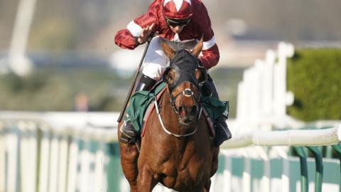 Horse Racing - BBC Sport