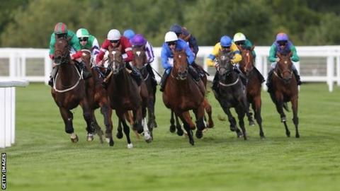 Jockeys in a race