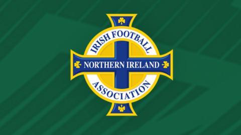 The Irish FA is the Northern Ireland football governing body