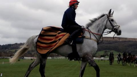 Lake View Lad ahead of Champion Day at the 2019 Cheltenham Festival