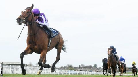 Magical race horse at Naas Racecourse