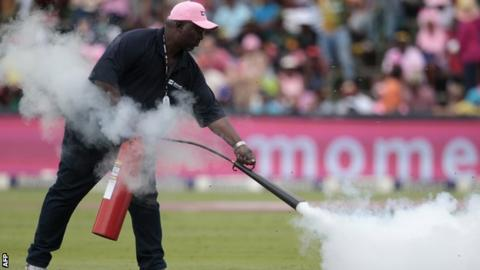 A groundsman uses a fire extinguisher to disperse the bees at the Wanderers