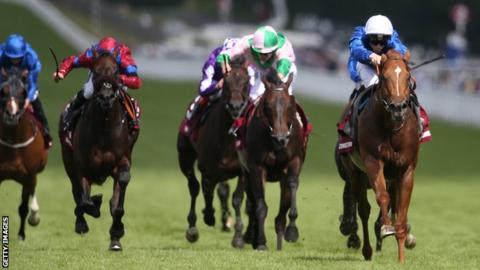Dutch Connection at Glorious Goodwood