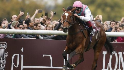 Enable now has five consecutive victories at the top level