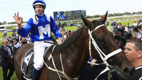 Winx after her 32nd consecutive win