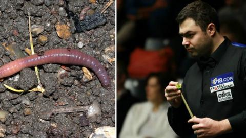 Worm and Kurt Maflin