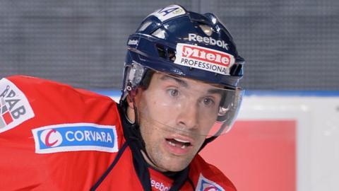 Steve Saviano