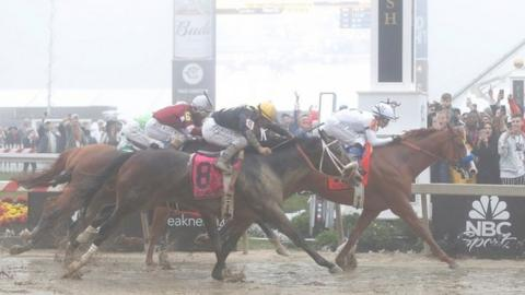 Watch Second Triple Crown Race Online