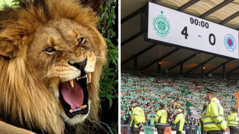 A lion and Celtic fans at Hampden on Sunday