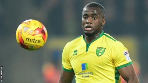 Sebastien Bassong in action for Norwich