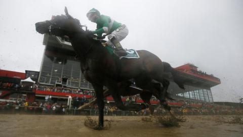 Exaggerator with Kent Desormeaux aboard wins the 141st Preakness Stakes
