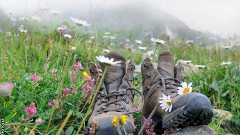 walking shoes in a field