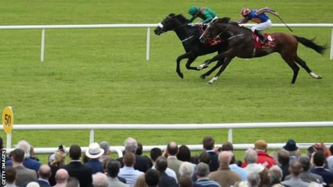 Harzand beat Idaho by half a length at the Curragh
