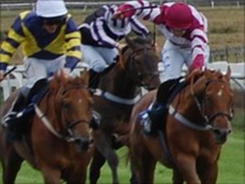 Horses at Les Landes