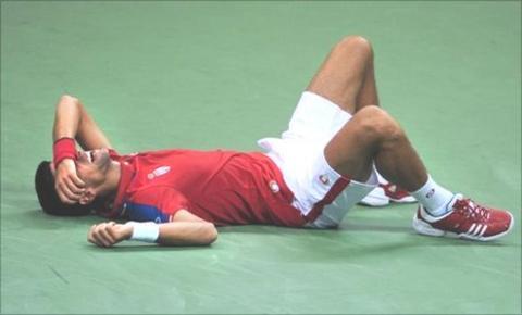 Novak Djokovic feels the pain against Juan Martin del Potro