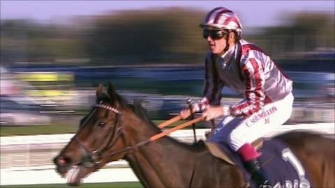 Cirrus Des Aigles, winner of Champion Stakes