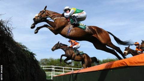 Ballabriggs, winner of the 2011 Grand National, jumps a fence