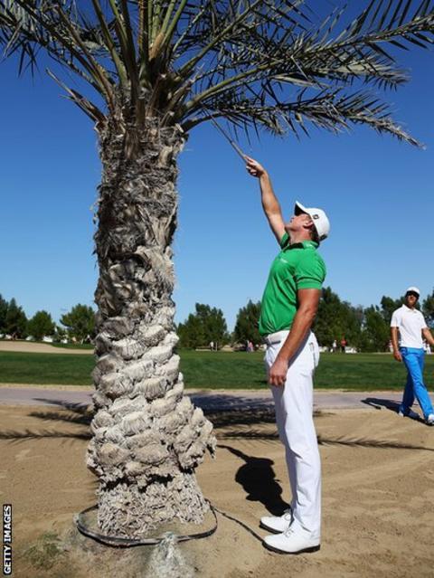 Jamie Donaldson tries to retrieve his ball from a tree in Dubai